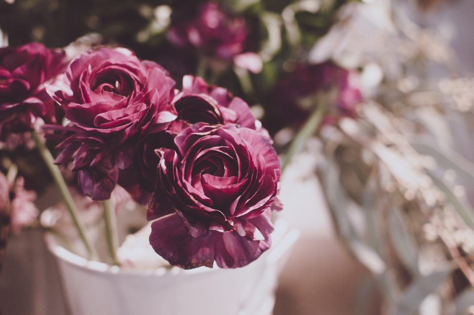 20 niche parfémových značek, které byste měli znát